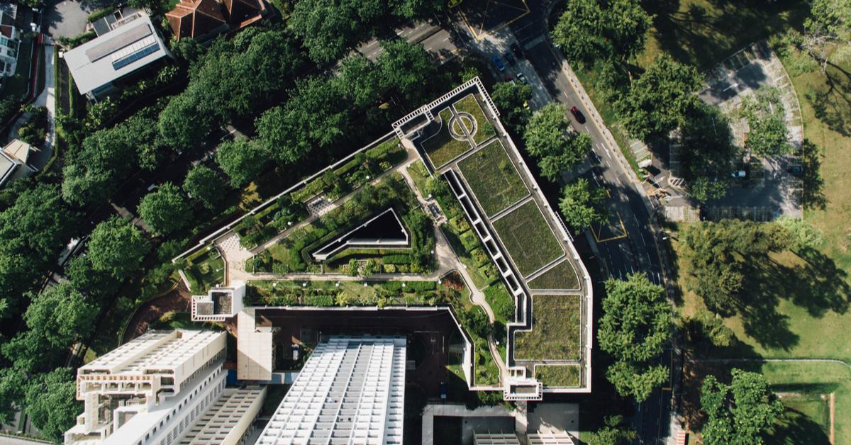 Stratigrafia e posa in opera di un tetto verde