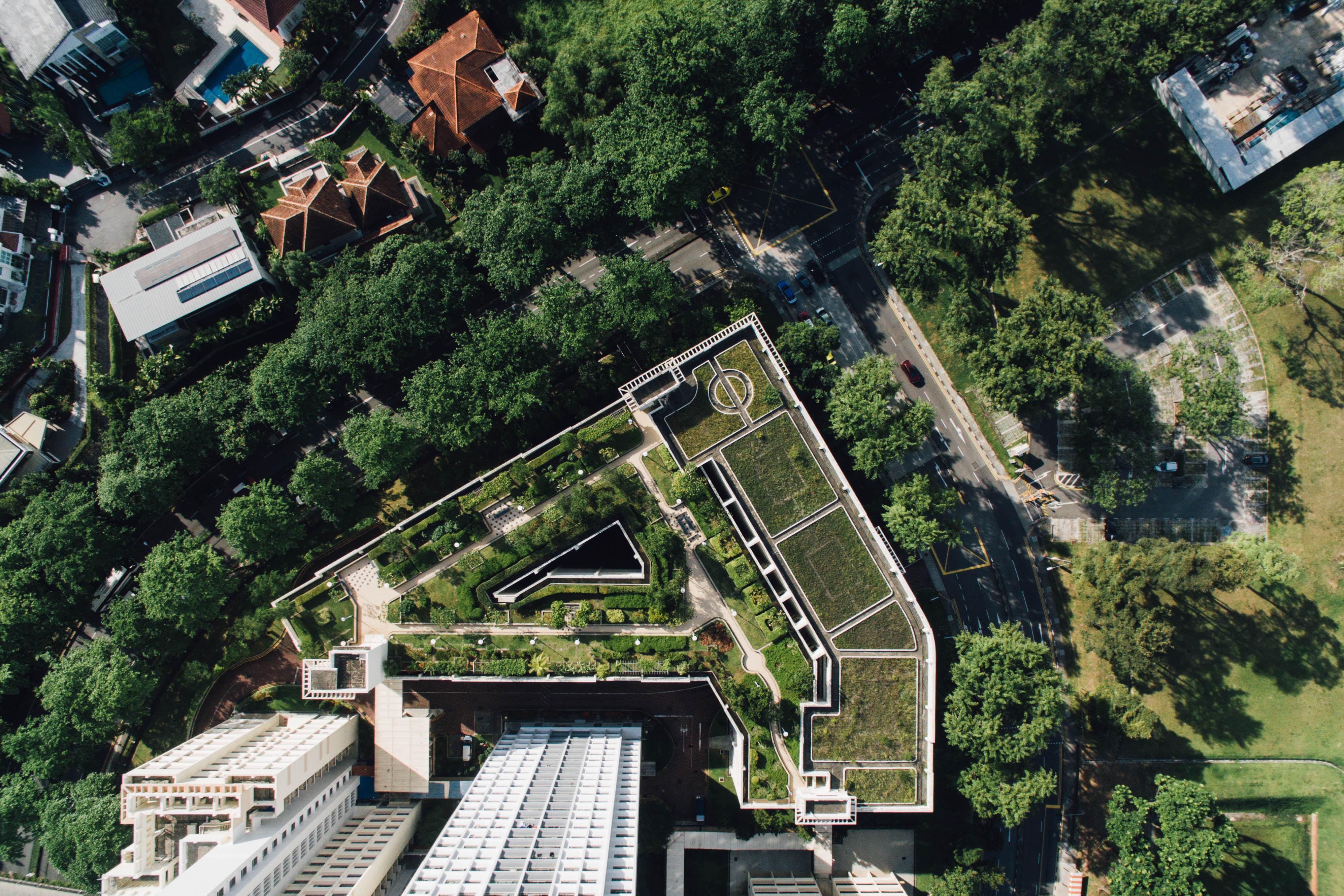 Scegliere un tetto verde conviene